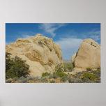 Jumbo Rocks at Joshua Tree National Park Poster