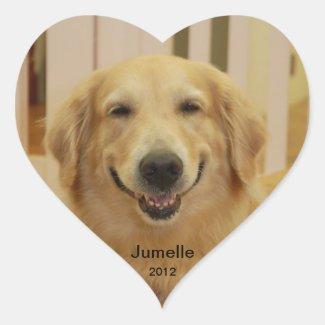 Jumelle Smile 2012 Sticker