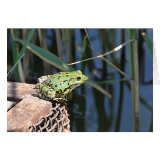Jump - green frog Greeting card