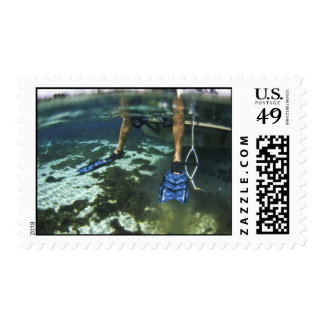 Jump In! Postage Stamp