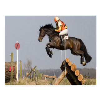 jump over difficulty to success horse Cross Postcard
