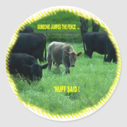 JUMPED THE FENCE CLASSIC ROUND STICKER