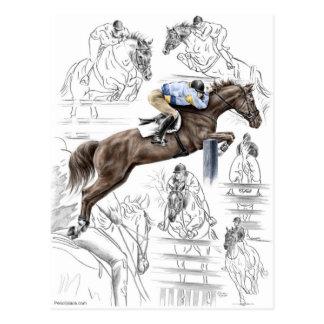 Jumper Horses Fences Montage Postcard