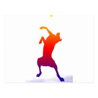 Jumping colourful dog postcard