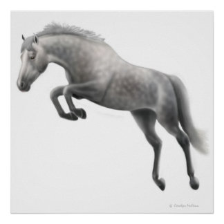 Jumping Dappled Grey Horse Poster
