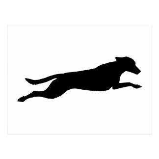 Jumping Dog Silhouette Postcard