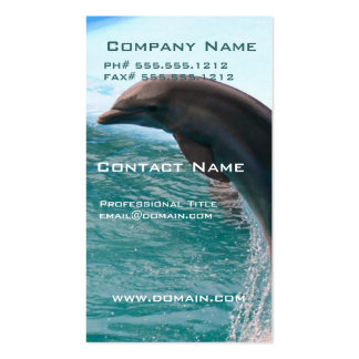 Jumping Dolphin Business Card
