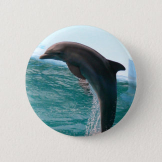Jumping Dolphin Button