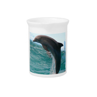 Jumping Dolphin Pitcher