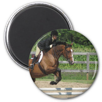 Jumping Horse Magnet