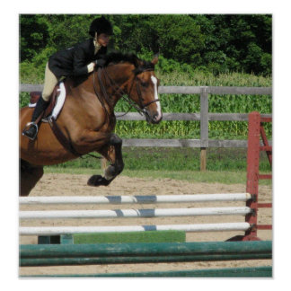 Jumping Horse Poster Print