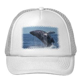 Jumping Humpback Whale Baseball Hat