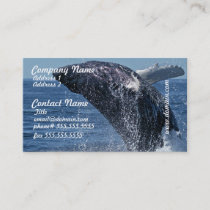 Jumping Humpback Whale Business Cards
