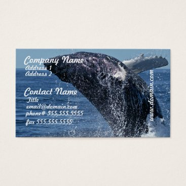Professional Business Jumping Humpback Whale Business Cards