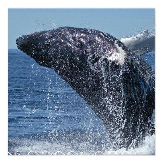 Jumping Humpback Whale  Invitations