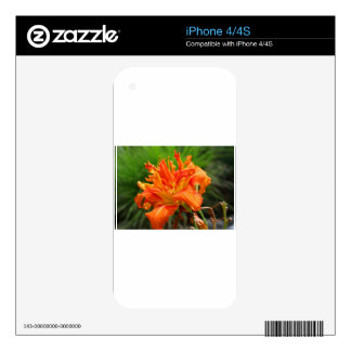 Jumping Julius Decals For The iPhone 4S