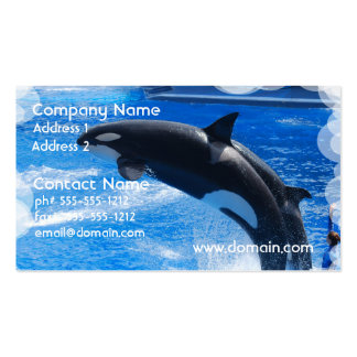Jumping Orca Whale Business Card