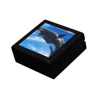 Jumping Orca Whale Jewelry Box
