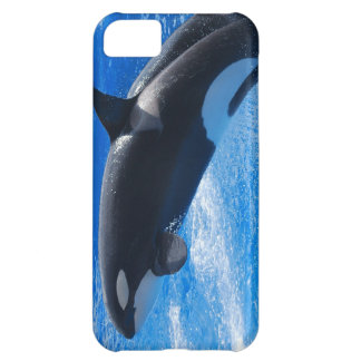 Jumping Orca Whale iPhone 5C Case