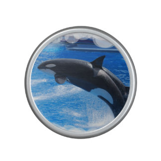 Jumping Orca Whale Bluetooth Speaker