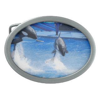 Jumping Orcas Oval Belt Buckle