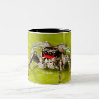 Jumping Spider Two-Tone Coffee Mug