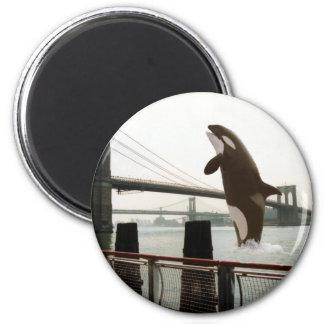 Jumping the Brooklyn Bridge Magnet