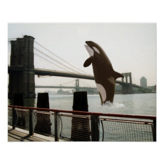 Jumping the Brooklyn Bridge Poster