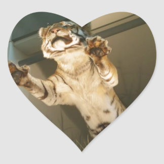 Jumping tiger - look at his paws! heart sticker