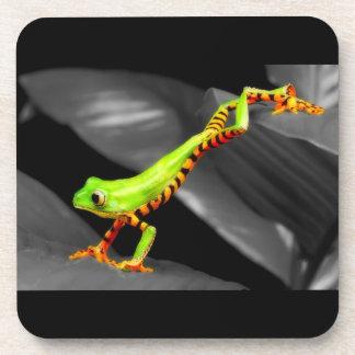 Jumping Tree Frog Coaster
