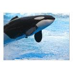 "Jumping Whale Invitation 5"" X 7"" Invitation Card"