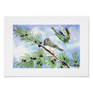 Junco and the juniper fairy poster
