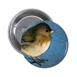JUNCO BIRD DRAWING 2 INCH ROUND BUTTON