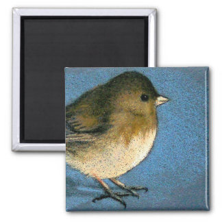JUNCO BIRD DRAWING 2 INCH SQUARE MAGNET