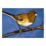 Junco: Bird: Wildlife Art: Painting Greeting Card