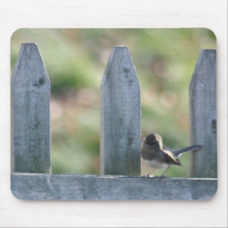 Junco photography mouse pad