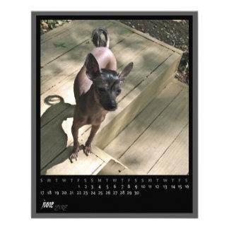 june 2012 calendar flyer