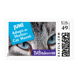 JUNE - Adopt-a-Rescued-Cat Month Postage Stamp