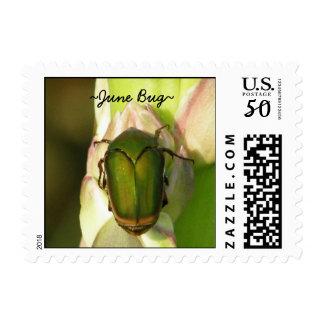 June Bug Postage