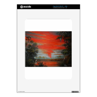 June FireSky Decal For The iPad