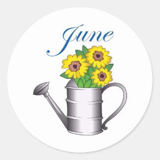 JUNE FLOWERS CLASSIC ROUND STICKER