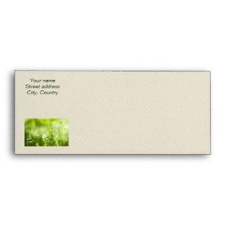 June green grass flowering envelopes
