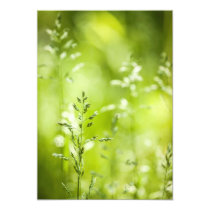 June green grass flowering invitation