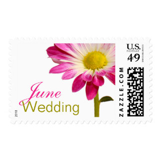 June Wedding Invitation Stamps | Daisy Postage