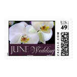 June Wedding Orchid stamps