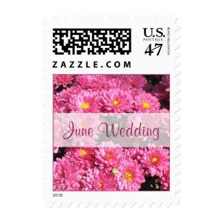 June Wedding pink flowers Postage