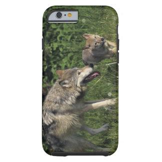 Jungem Welpen del mit de Wolfmutter Funda Para iPhone 6 Tough