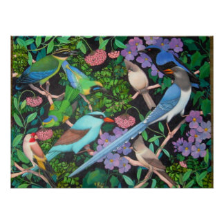 Jungle Birds of Asia Poster