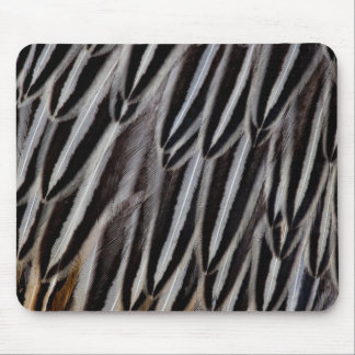 Jungle cock feathers close-up mouse pad