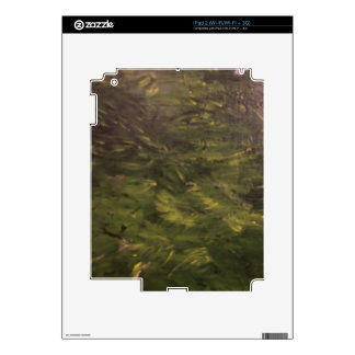 Jungle Floor Decal For iPad 2